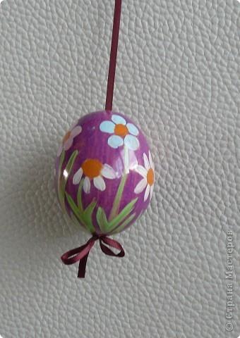 Пасхальные яйца 1 фото 1