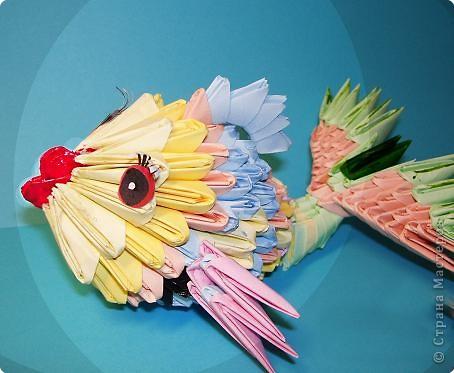 Оригами модульное: моя рыбка фото 1