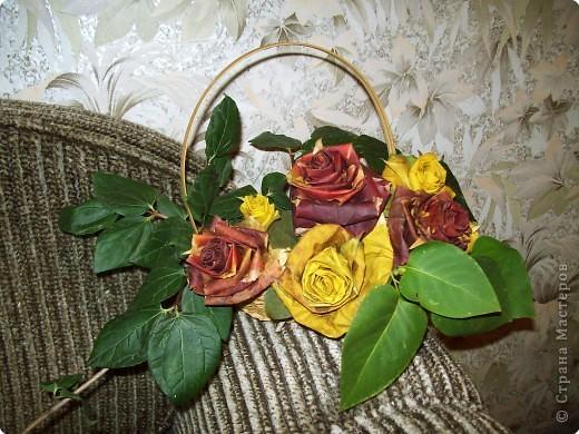 А это наши розы!))))