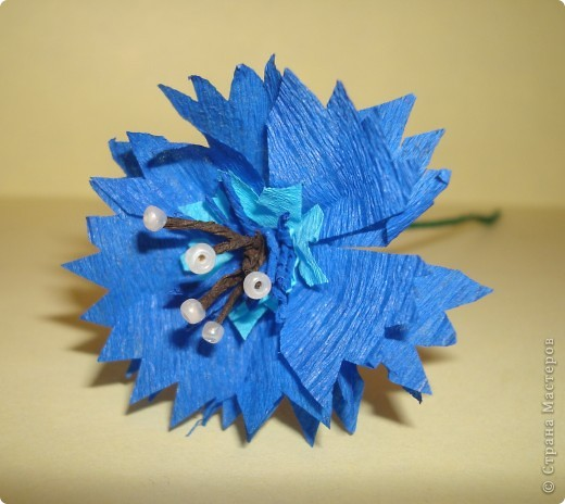 Для изготовления василька необходимы 2 синих круга произвольного диаметра,1 голубой-поменьше и две полоски синего и коричневого цвета,проволочка и зеленая бумага для стебля и листочков,а также бисер. фото 8