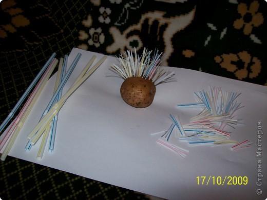 грибы из картофеля,цветы и трава из морковки фото 2