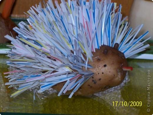 грибы из картофеля,цветы и трава из морковки фото 3