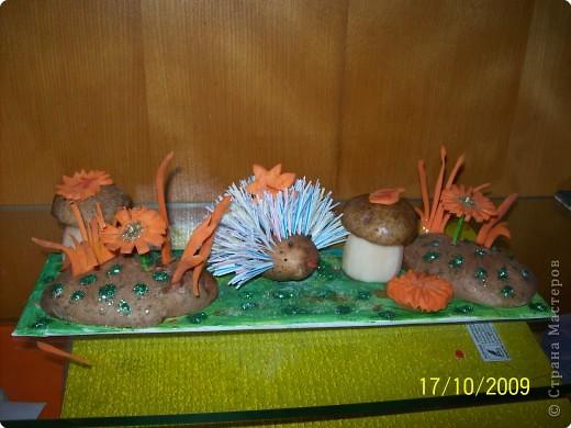 грибы из картофеля,цветы и трава из морковки фото 1