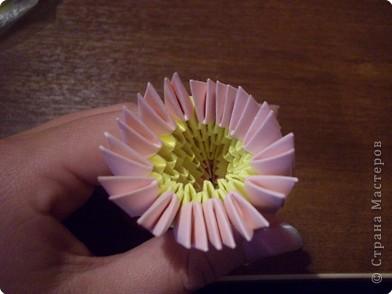 Берем 293 розовых,196 желтых и 168 светло-розовых модуля фото 13