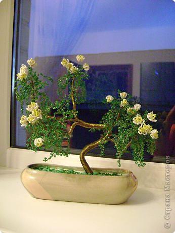 Бисероплетение: Еще одно дерево в стиле бонсай