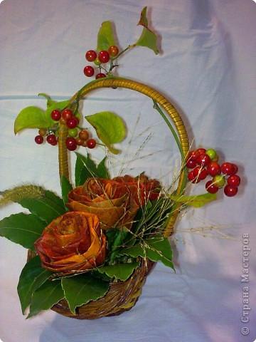 осень. розы -  листья хурмы и лавра фото 2