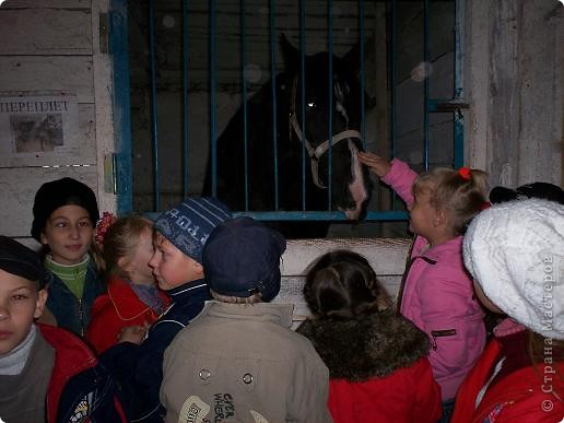 Сами побывали лошадками фото 4