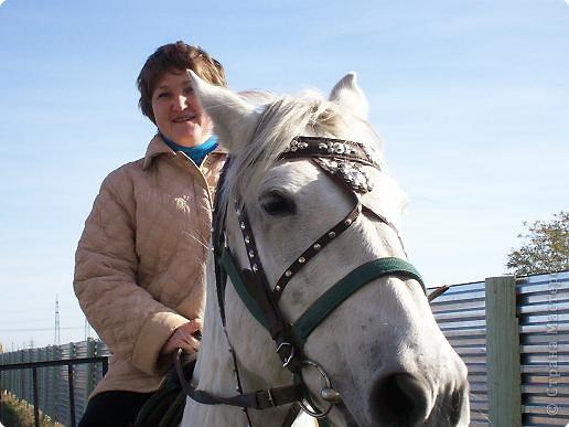 Сами побывали лошадками фото 6