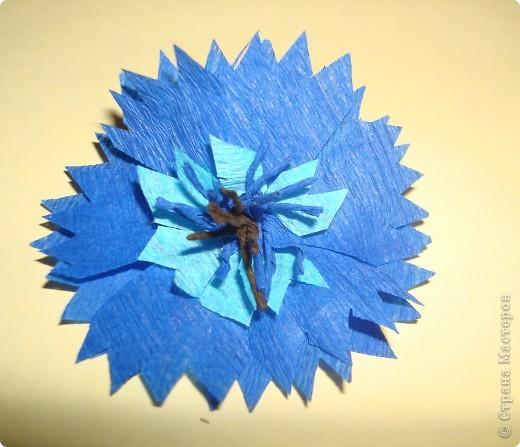 Для изготовления василька необходимы 2 синих круга произвольного диаметра,1 голубой-поменьше и две полоски синего и коричневого цвета,проволочка и зеленая бумага для стебля и листочков,а также бисер. фото 6
