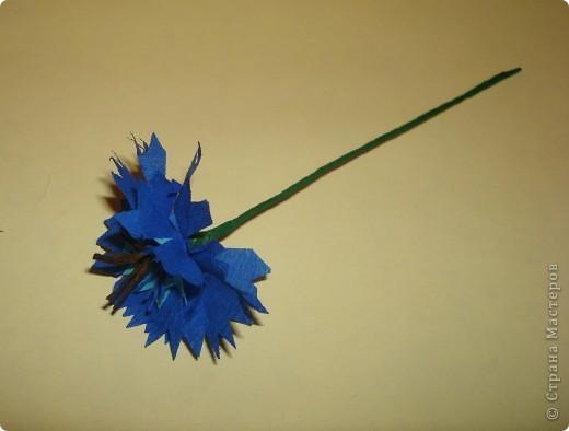 Для изготовления василька необходимы 2 синих круга произвольного диаметра,1 голубой-поменьше и две полоски синего и коричневого цвета,проволочка и зеленая бумага для стебля и листочков,а также бисер. фото 7