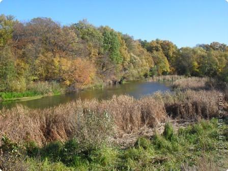 Осень на Тамбовщине. фото 1