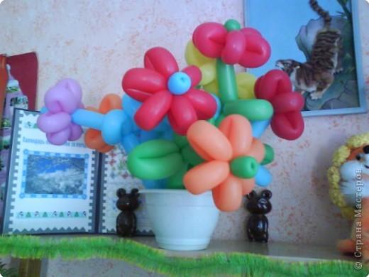 Такими цветами мы украшали сцену. фото 1