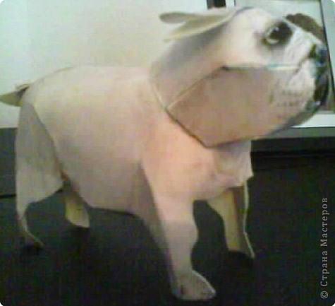 Бумагопластика: Собачка фото 2