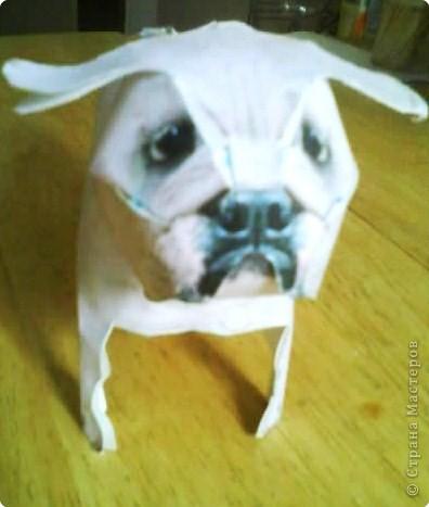 Бумагопластика: Собачка фото 1