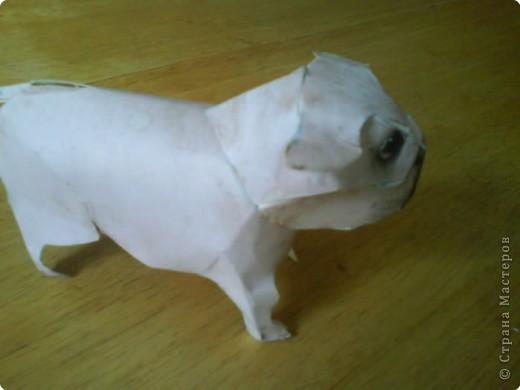Бумагопластика: Собачка фото 3