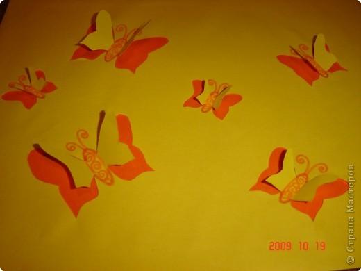 Летящие бабочки
