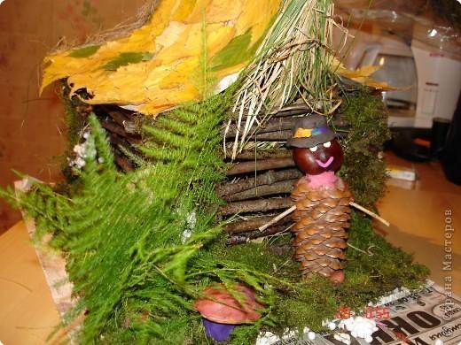 Леший и его лесной домик. фото 1
