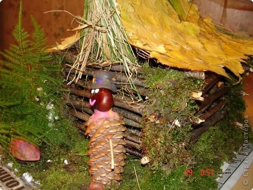 Леший и его лесной домик. фото 3