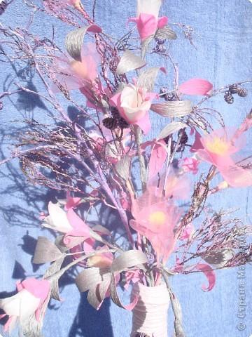 розовая фуксия фото 3