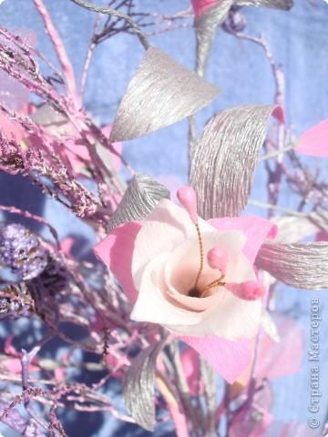 розовая фуксия фото 1