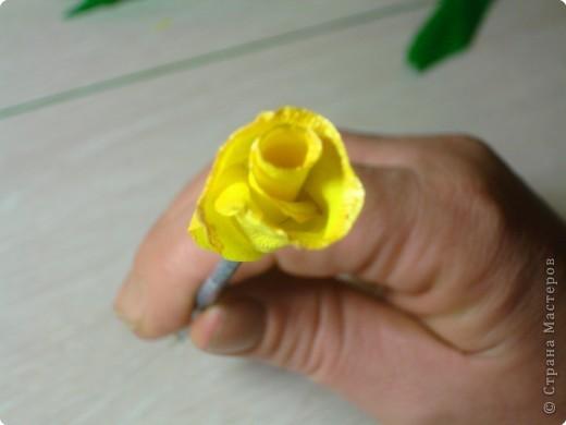 Учимся делать розы. фото 13
