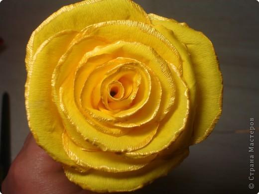 Учимся делать розы. фото 15