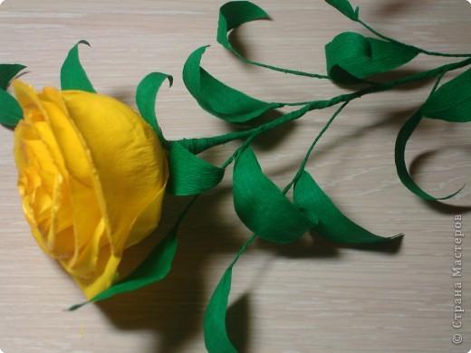 Учимся делать розы. фото 28