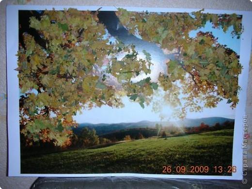 Осенняя красота!