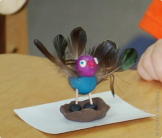 Птицы сделаны из перышек и пластилина детьми 3-х лет на занятиях по раннему развитию фото 1