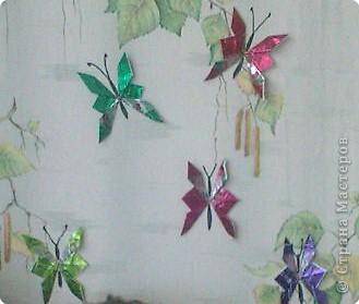 Бабочки, МК фото 1