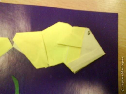 Оригами: Рыбки фото 1