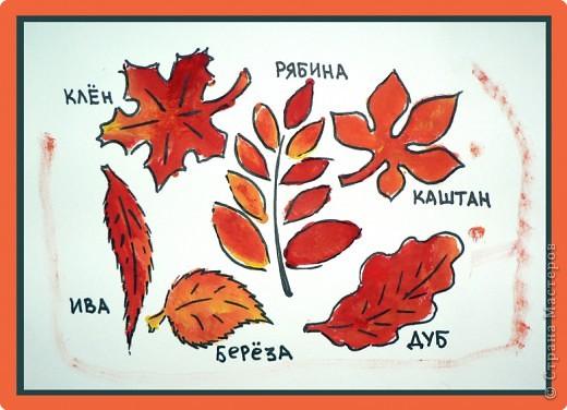 Яркие краски осени.  фото 1