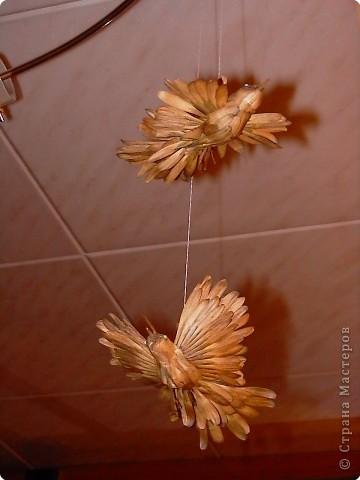 Вот такие птицы зимуют в нашем доме. Сделаны они из ясеневых(?) семян, пластилина, зернышка пшенки (для глаз) и подвешены на люстру за ниточку. фото 1