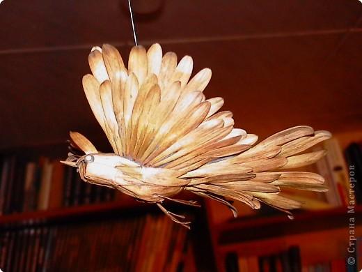 Вот такие птицы зимуют в нашем доме. Сделаны они из ясеневых(?) семян, пластилина, зернышка пшенки (для глаз) и подвешены на люстру за ниточку. фото 2