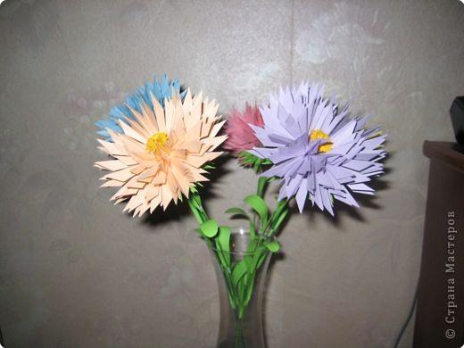 Бумагопластика: астры цветут фото 1