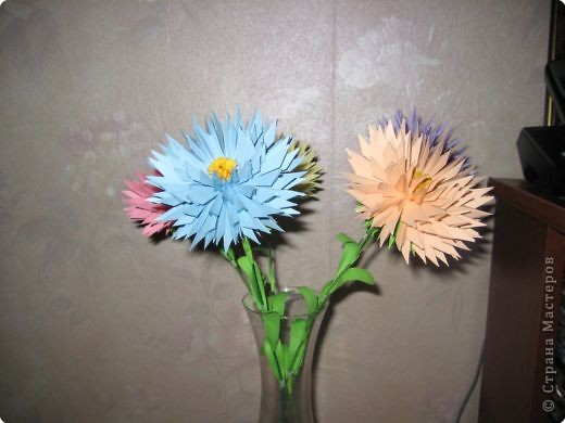 Бумагопластика: астры цветут фото 2