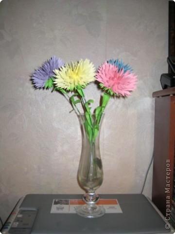 Бумагопластика: астры цветут фото 4