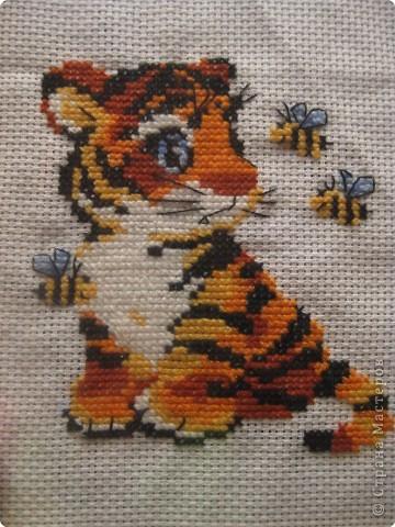 тиграша фото 1