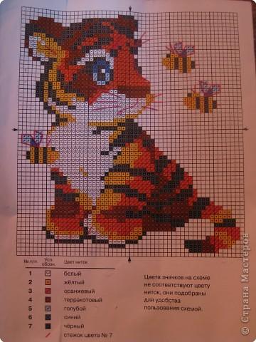 тиграша фото 2