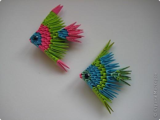Техника: Оригами модульное.  Источник.  Этих рыбок я нашла в интернете,собрала без схемы по фотографии.