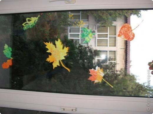 осень на окне фото 1