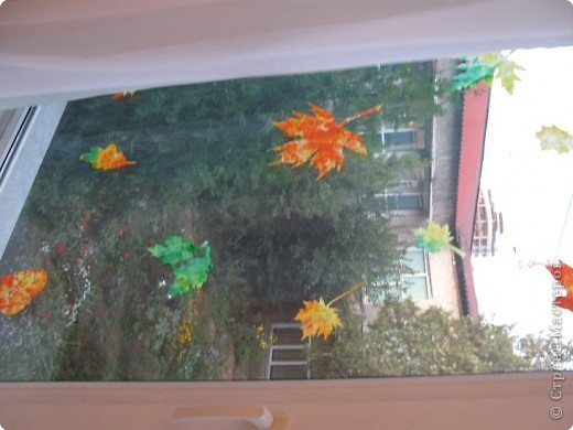 осень на окне фото 2