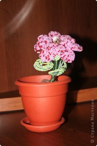 Бисероплетение: цветочек из бисера