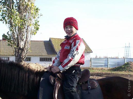 Сами побывали лошадками фото 5