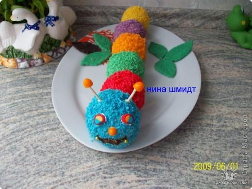 """Торт-пирожное """"Гусеница"""" фото 1"""