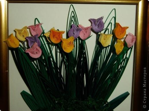 Квиллинг: Тюльпаны фото 2