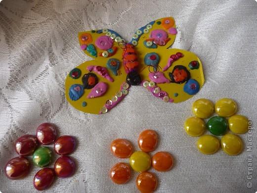 бабочка красавица