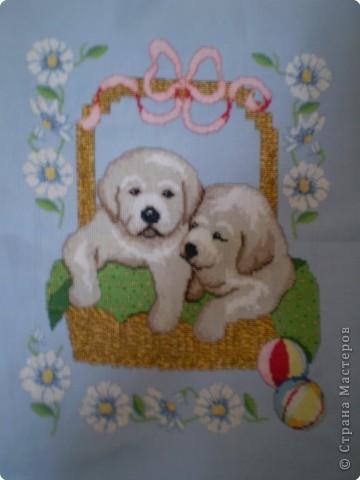 Вышивка крестом: щенки в корзинке фото 1