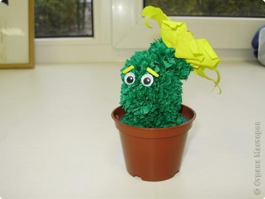 Ох, как я люблю этот кактусик!!!!!!