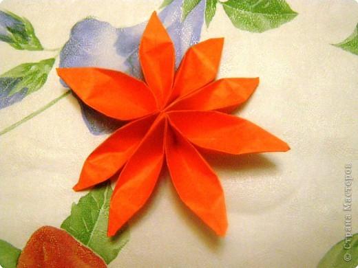 Вот такой цветочек сейчас попробуем сделать фото 1